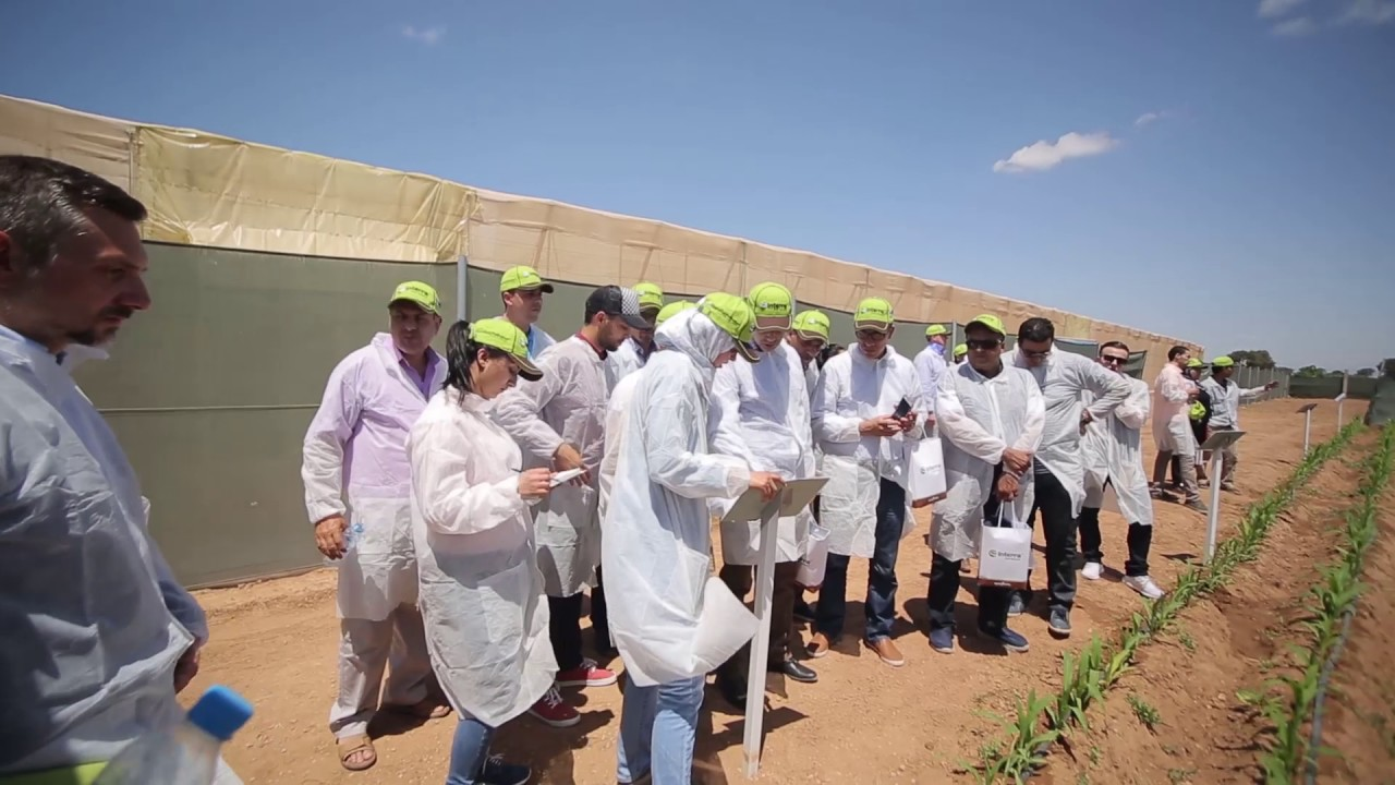 Syngenta Maroc – Inauguration Interra Farm